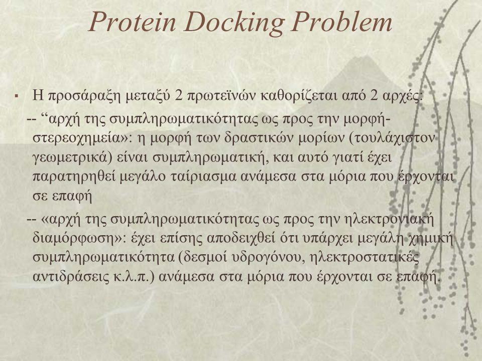 """Protein Docking Problem  Η προσάραξη μεταξύ 2 πρωτεϊνών καθορίζεται από 2 αρχές: -- """"αρχή της συμπληρωματικότητας ως προς την μορφή- στερεοχημεία»: η"""