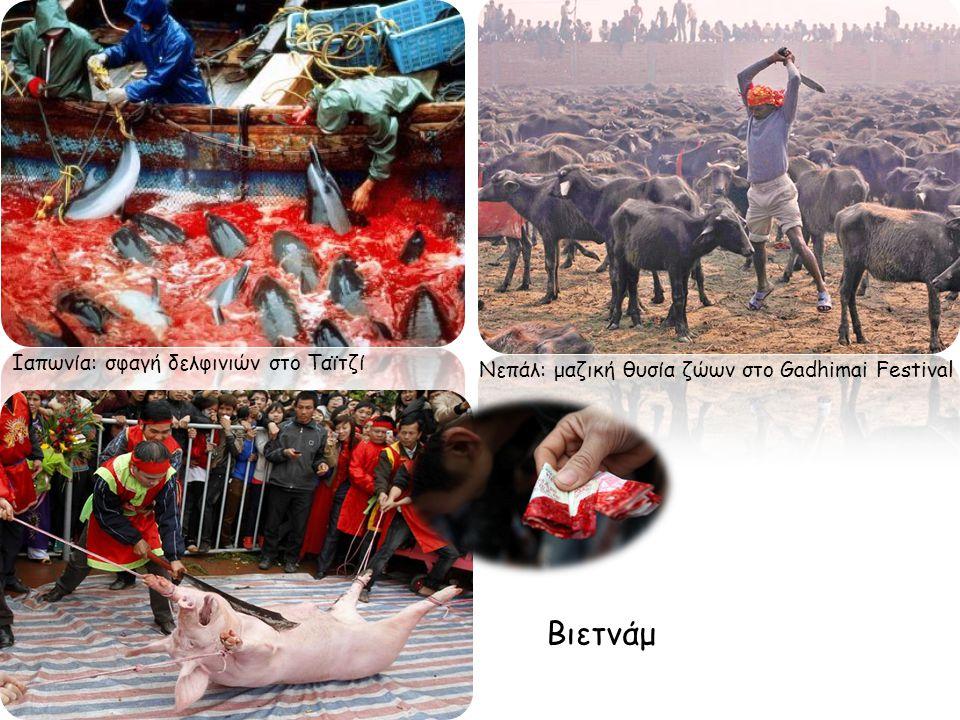 Ιαπωνία: σφαγή δελφινιών στο Ταϊτζί Νεπάλ: μαζική θυσία ζώων στο Gadhimai Festival Βιετνάμ