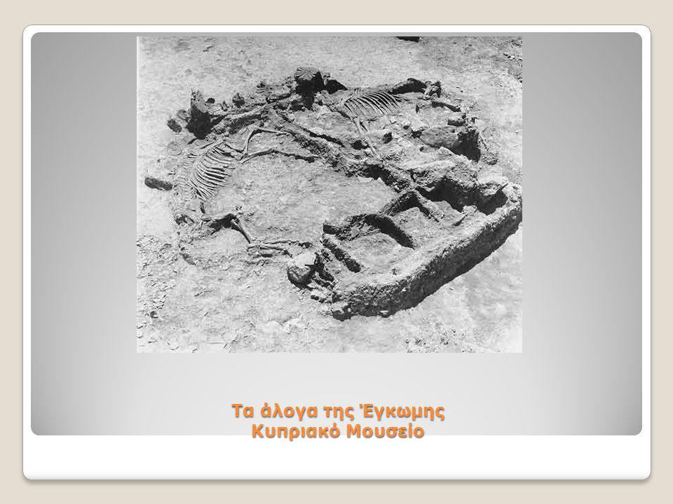 Τα άλογα της Έγκωμης Κυπριακό Μουσείο