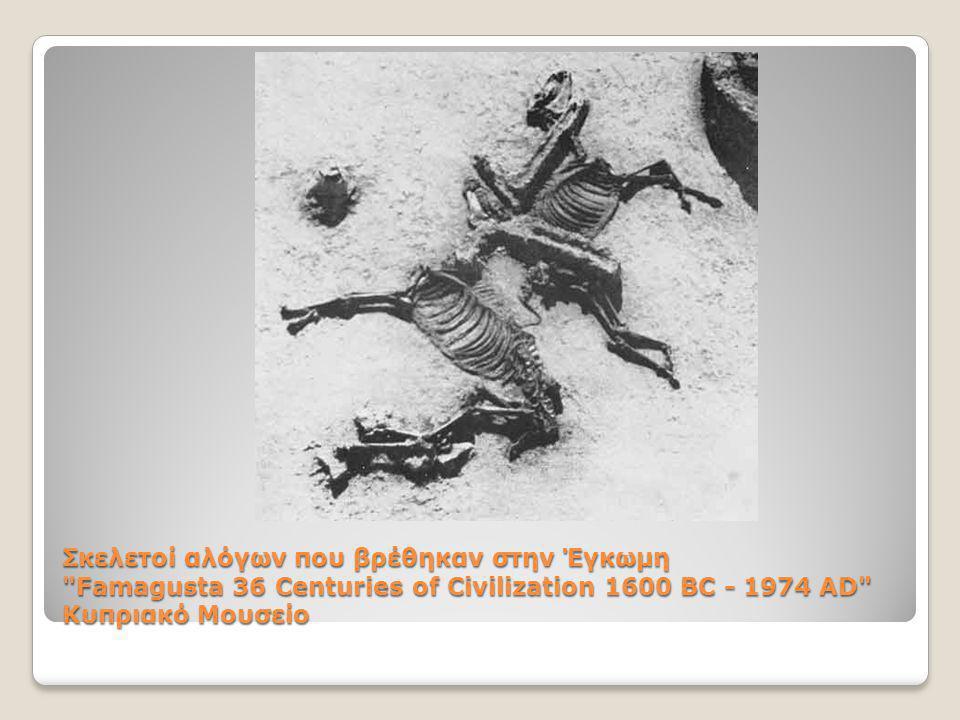 Σκελετοί αλόγων που βρέθηκαν στην Έγκωμη