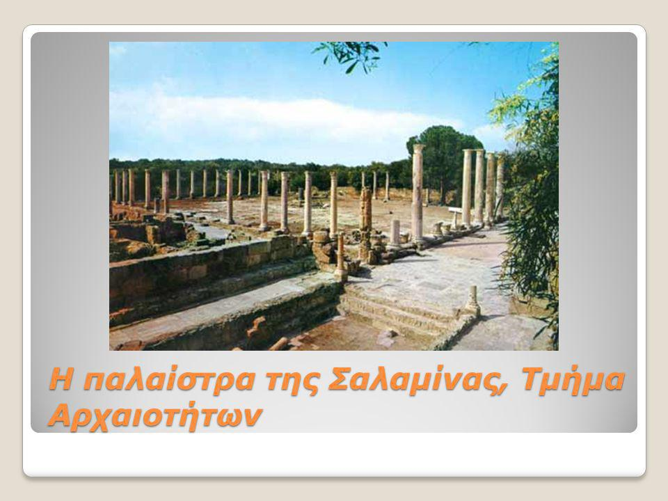 Η παλαίστρα της Σαλαμίνας, Τμήμα Αρχαιοτήτων