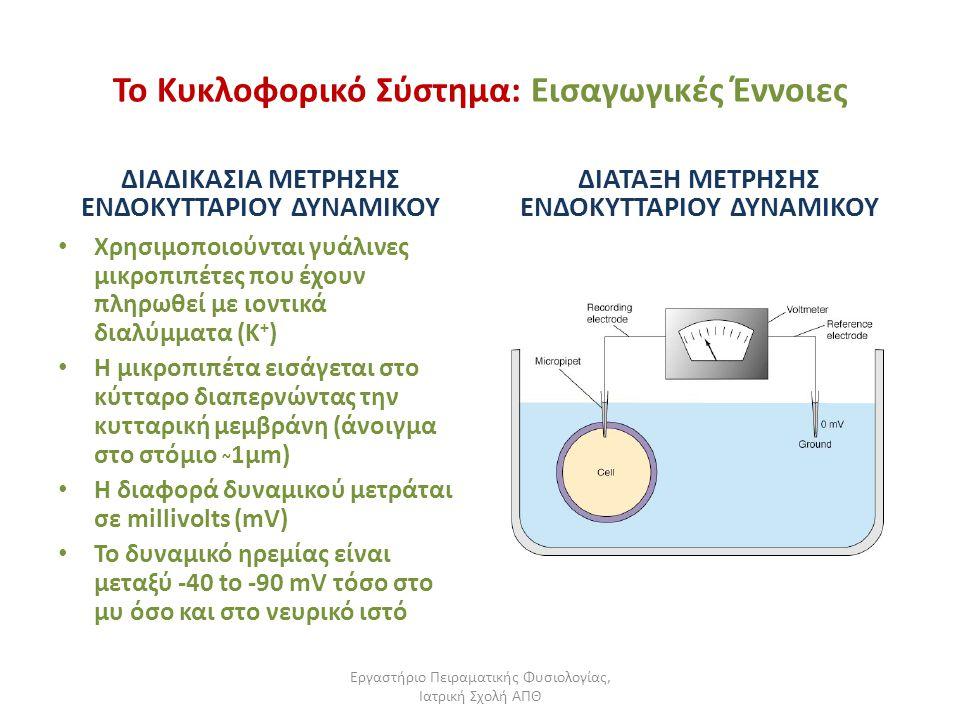 Εργαστήριο Πειραματικής Φυσιολογίας, Ιατρική Σχολή ΑΠΘ Το Κυκλοφορικό Σύστημα: Εισαγωγικές Έννοιες ΔΙΑΔΙΚΑΣΙΑ ΜΕΤΡΗΣΗΣ ΕΝΔΟΚΥΤΤΑΡΙΟΥ ΔΥΝΑΜΙΚΟΥ Χρησιμο