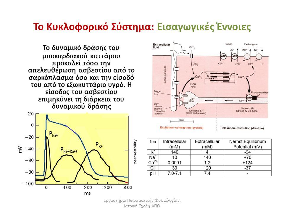 Εργαστήριο Πειραματικής Φυσιολογίας, Ιατρική Σχολή ΑΠΘ Το Κυκλοφορικό Σύστημα: Εισαγωγικές Έννοιες Το δυναμικό δράσης του μυοκαρδιακού κυττάρου προκαλ