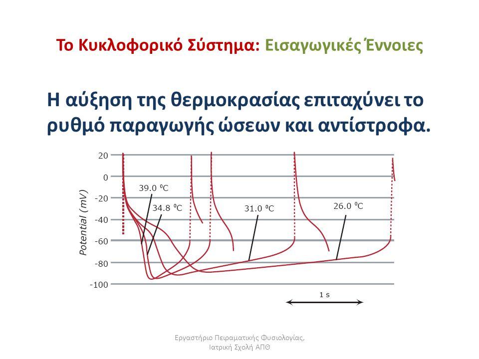 Εργαστήριο Πειραματικής Φυσιολογίας, Ιατρική Σχολή ΑΠΘ Το Κυκλοφορικό Σύστημα: Εισαγωγικές Έννοιες Η αύξηση της θερμοκρασίας επιταχύνει το ρυθμό παραγ
