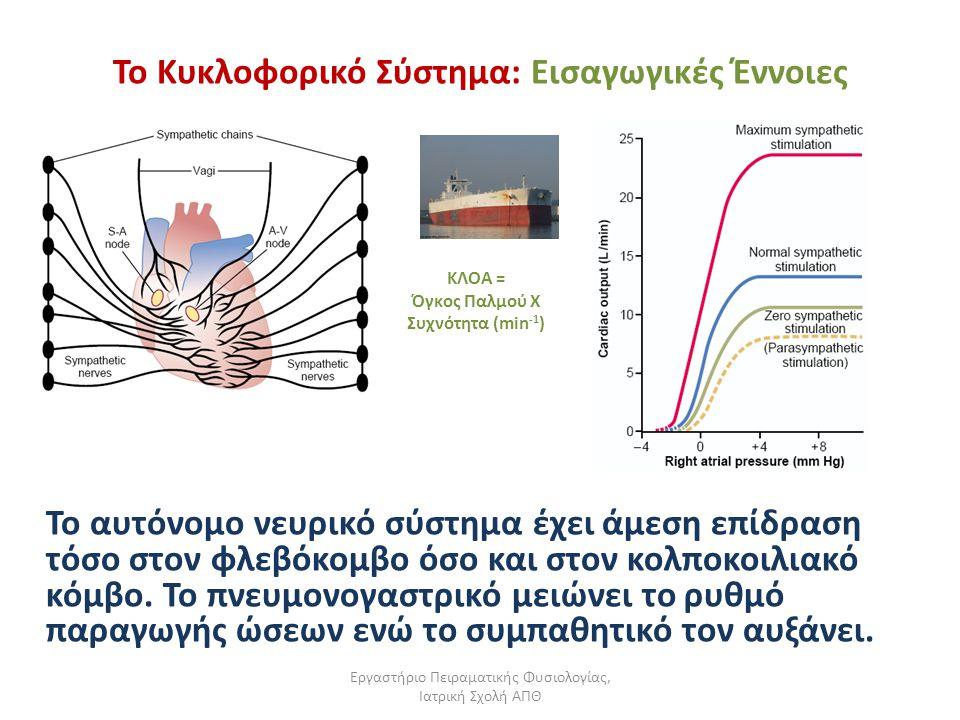 Εργαστήριο Πειραματικής Φυσιολογίας, Ιατρική Σχολή ΑΠΘ Το Κυκλοφορικό Σύστημα: Εισαγωγικές Έννοιες Το αυτόνομο νευρικό σύστημα έχει άμεση επίδραση τόσ