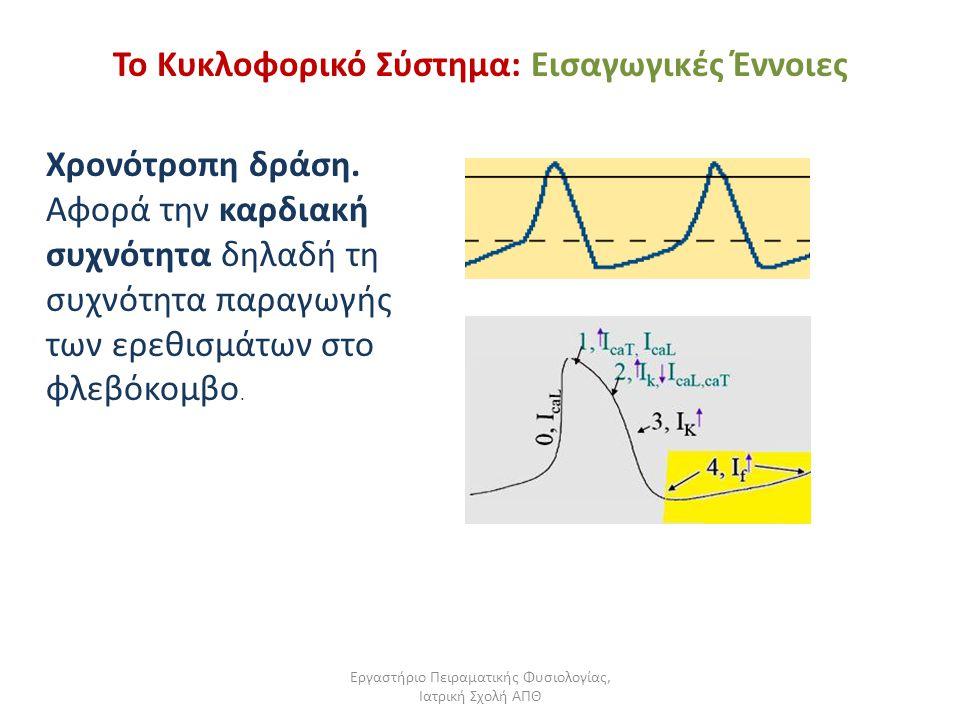 Εργαστήριο Πειραματικής Φυσιολογίας, Ιατρική Σχολή ΑΠΘ Το Κυκλοφορικό Σύστημα: Εισαγωγικές Έννοιες Χρονότροπη δράση. Αφορά την καρδιακή συχνότητα δηλα