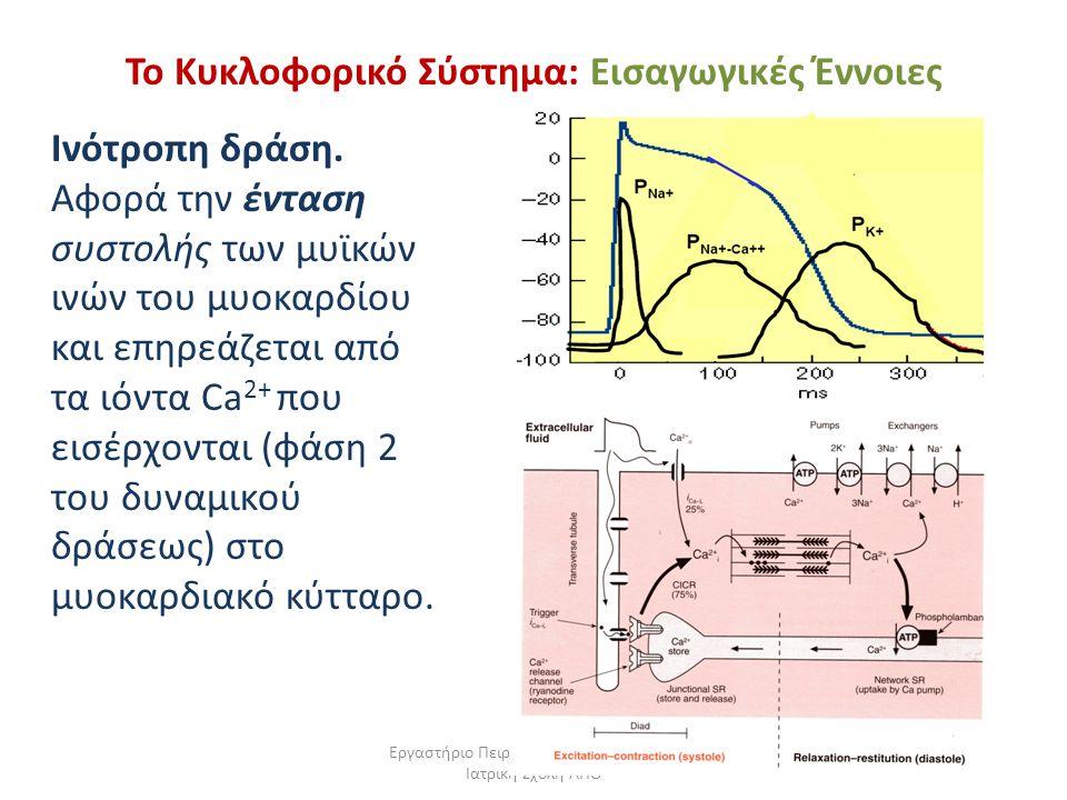 Εργαστήριο Πειραματικής Φυσιολογίας, Ιατρική Σχολή ΑΠΘ Το Κυκλοφορικό Σύστημα: Εισαγωγικές Έννοιες Iνότροπη δράση. Αφορά την ένταση συστολής των μυϊκώ