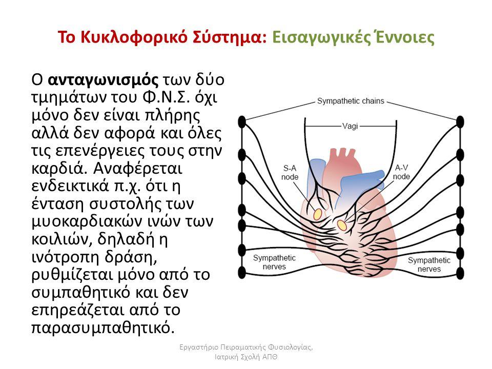 Εργαστήριο Πειραματικής Φυσιολογίας, Ιατρική Σχολή ΑΠΘ Το Κυκλοφορικό Σύστημα: Εισαγωγικές Έννοιες Ο ανταγωνισμός των δύο τμημάτων του Φ.Ν.Σ. όχι μόνο