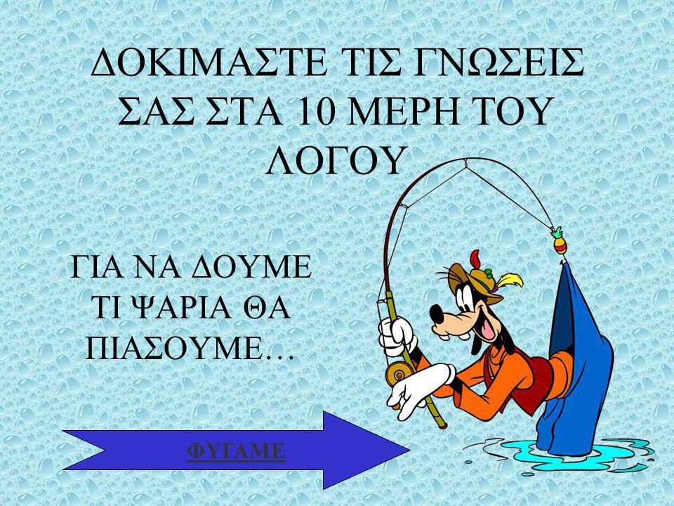 ΒΑΣΙΛΕΙΑΔΟΥ ΕΛΙΣΑΒΕΤ11 4.