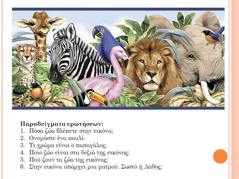 Παραδείγματα ερωτήσεων: 1.Πόσα ζώα βλέπετε στην εικόνα; 2.Ονομάστε ένα πουλί. 3.Τι χρώμα είναι ο παπαγάλος; 4.Ποιο ζώο είναι στα δεξιά της εικόνας; 5.