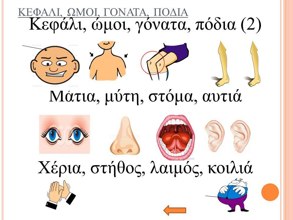 ΚΕΦΑΛΙ, ΩΜΟΙ, ΓΟΝΑΤΑ, ΠΟΔΙΑ Κεφάλι, ώμοι, γόνατα, πόδια (2) Μάτια, μύτη, στόμα, αυτιά Χέρια, στήθος, λαιμός, κοιλιά