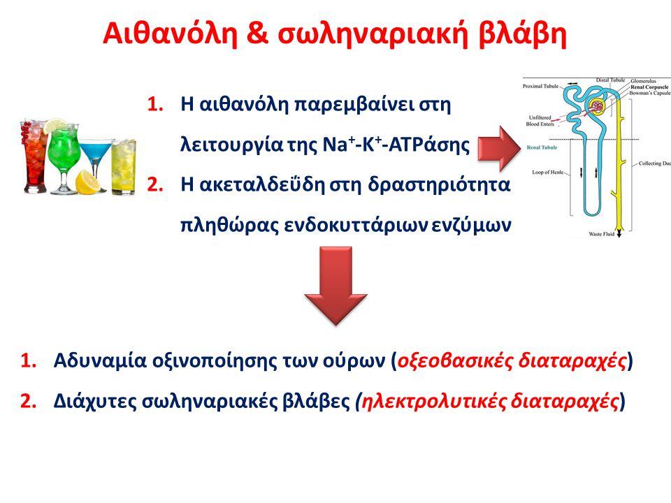 1.Η αιθανόλη παρεμβαίνει στη λειτουργία της Na + -K + -ATPάσης 2.Η ακεταλδεΰδη στη δραστηριότητα πληθώρας ενδοκυττάριων ενζύμων Αιθανόλη & σωληναριακή