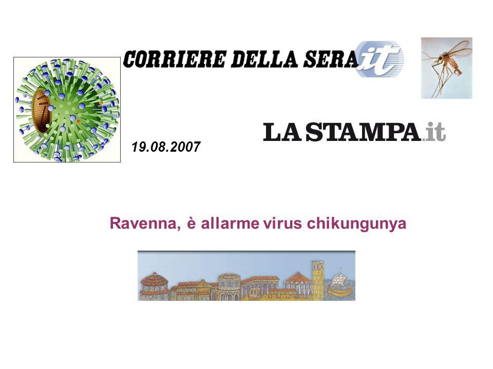Ravenna, è allarme virus chikungunya 19.08.2007