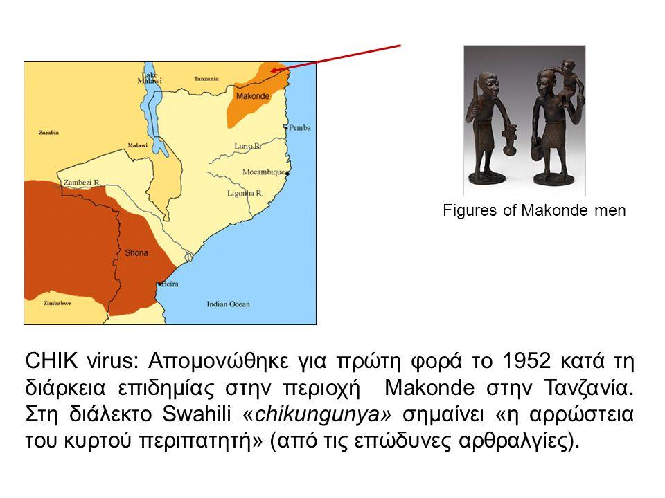CHIK virus: Απομονώθηκε για πρώτη φορά το 1952 κατά τη διάρκεια επιδημίας στην περιοχή Makonde στην Τανζανία. Στη διάλεκτο Swahili «chikungunya» σημαί