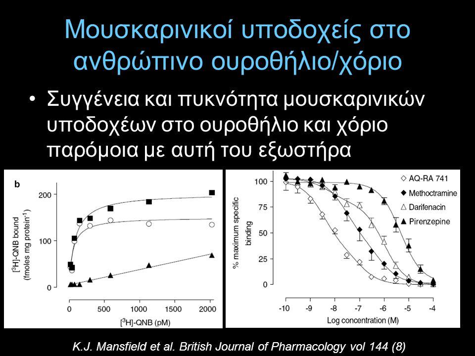 Μουσκαρινικοί υποδοχείς στο ανθρώπινο ουροθήλιο/χόριο Συγγένεια και πυκνότητα μουσκαρινικών υποδοχέων στο ουροθήλιο και χόριο παρόμοια με αυτή του εξω
