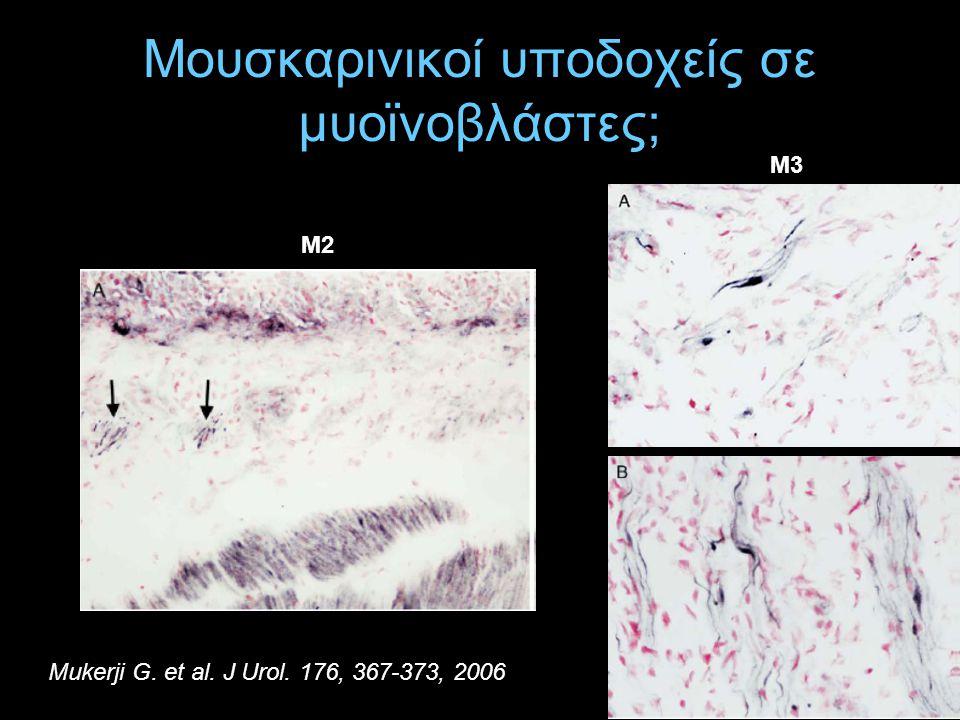 Μουσκαρινικοί υποδοχείς σε μυοϊνοβλάστες; Μ2 Μ3 Mukerji G. et al. J Urol. 176, 367-373, 2006