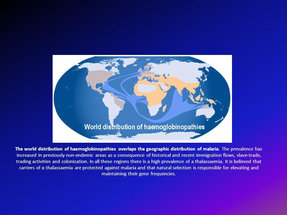 Ετ έ ροζυγη β-θαλασσαιμία (Thalassemia Minor) Ετεροζυγωτία (β/β 0 ή β/β +/++ ) Φορείς της νόσου : Ελλάδα 7,5% Κύπρος Σαρδηνία 15-17% Μαύρη φυλή 0,5-1%