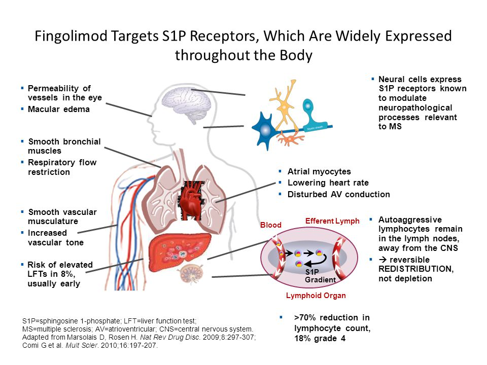 Fingolimod Targets S1P Receptors, Which Are Widely Expressed throughout the Body Efferent Lymph  Autoaggressive lymphocytes remain in the lymph nodes