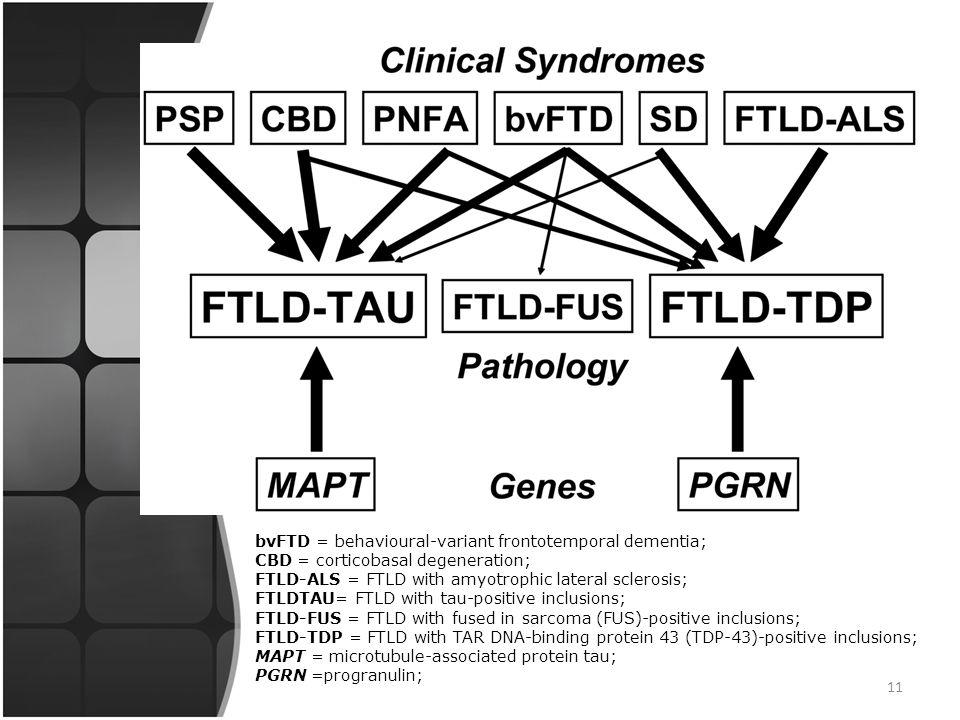 10 Το 1998 έρευνα σε οικογενή Μετωποκροταφική Άνοια έδειξε μεταλλάξεις στο χρωμόσωμα 17 που συσχετίζονται με την σύνθεση της tau-πρωτεΐνης. Πάντως γεν