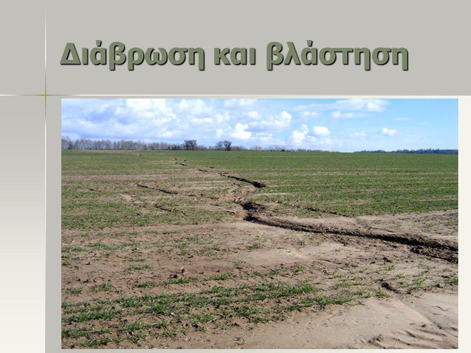 Διάβρωση και βλάστηση