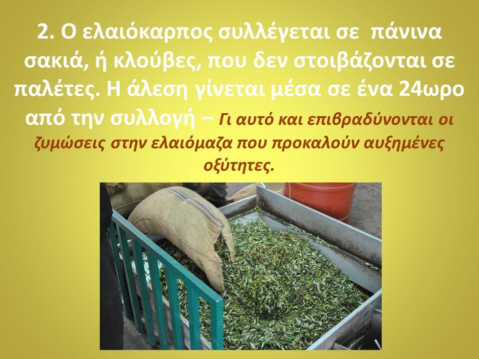2. Ο ελαιόκαρπος συλλέγεται σε πάνινα σακιά, ή κλούβες, που δεν στοιβάζονται σε παλέτες.
