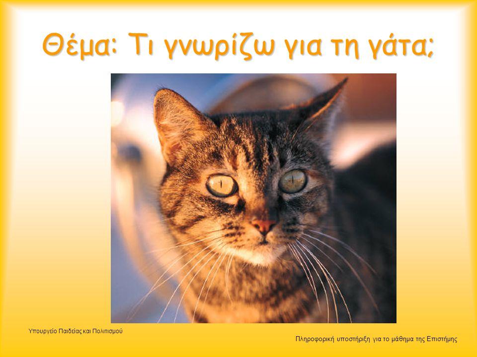 Πληροφορική υποστήριξη για το μάθημα της Επιστήμης Υπουργείο Παιδείας και Πολιτισμού Θέμα: Τι γνωρίζω για τη γάτα;