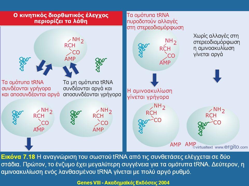 Genes VIII - Ακαδημαϊκές Εκδόσεις 2004 Εικόνα 7.18 Η αναγνώριση του σωστού tRNA από τις συνθετάσες ελέγχεται σε δύο στάδια. Πρώτον, το ένζυμο έχει μεγ