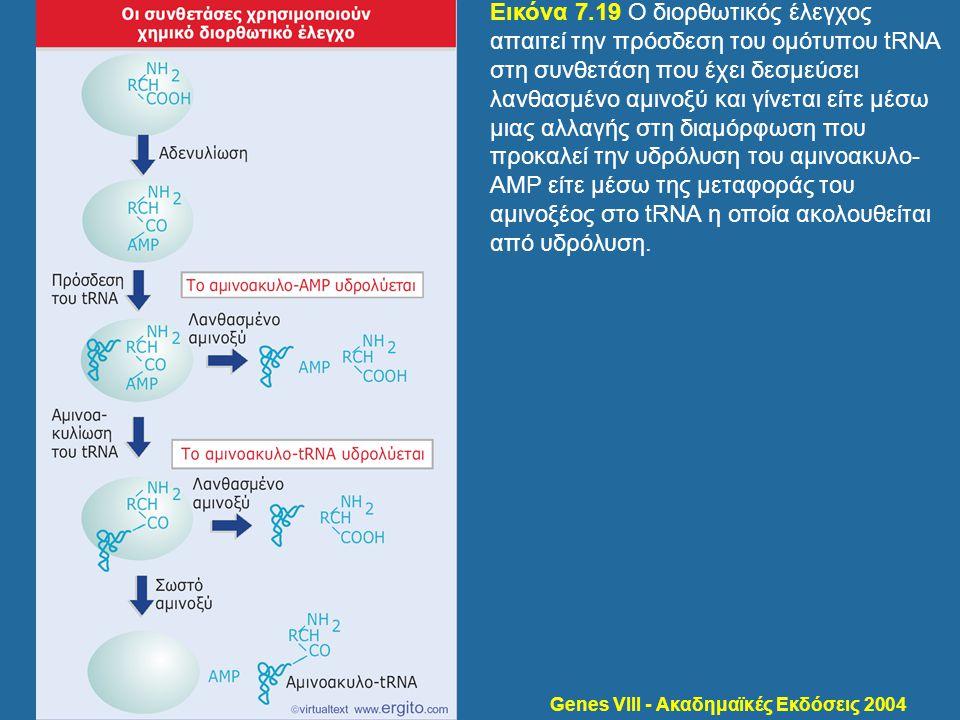 Genes VIII - Ακαδημαϊκές Εκδόσεις 2004 Εικόνα 7.19 Ο διορθωτικός έλεγχος απαιτεί την πρόσδεση του ομότυπου tRNA στη συνθετάση που έχει δεσμεύσει λανθα
