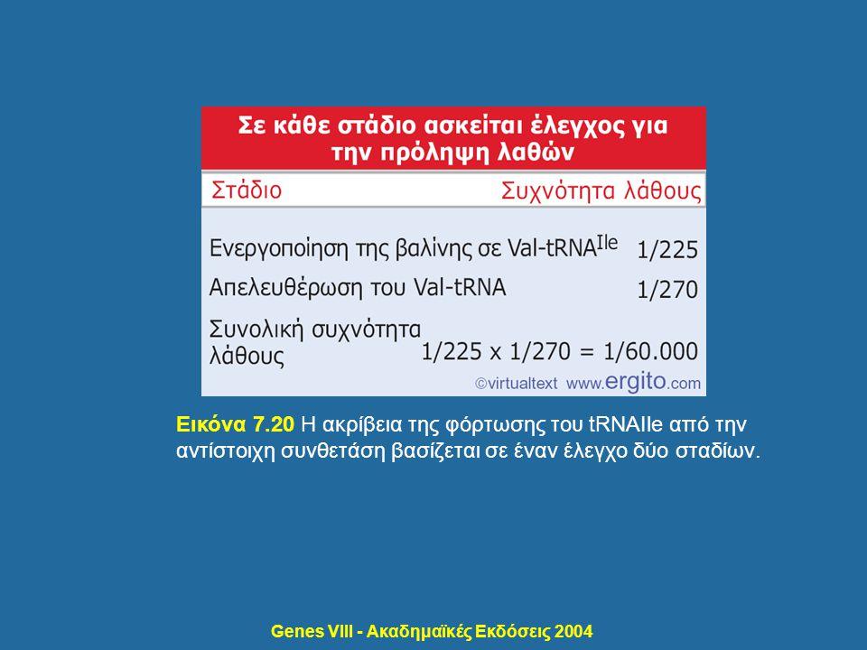 Genes VIII - Ακαδημαϊκές Εκδόσεις 2004 Εικόνα 7.20 Η ακρίβεια της φόρτωσης του tRNAIle από την αντίστοιχη συνθετάση βασίζεται σε έναν έλεγχο δύο σταδί