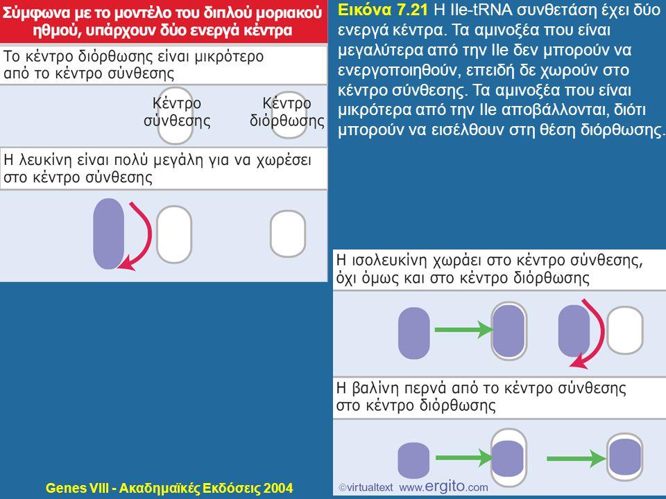Genes VIII - Ακαδημαϊκές Εκδόσεις 2004 Εικόνα 7.21 Η Ile-tRNA συνθετάση έχει δύο ενεργά κέντρα. Τα αμινοξέα που είναι μεγαλύτερα από την Ile δεν μπορο