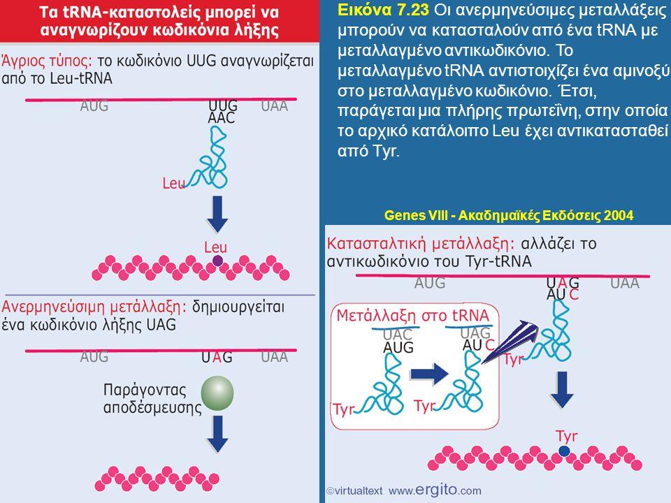 Genes VIII - Ακαδημαϊκές Εκδόσεις 2004 Εικόνα 7.23 Οι ανερμηνεύσιμες μεταλλάξεις μπορούν να κατασταλούν από ένα tRNA με μεταλλαγμένο αντικωδικόνιο. Το