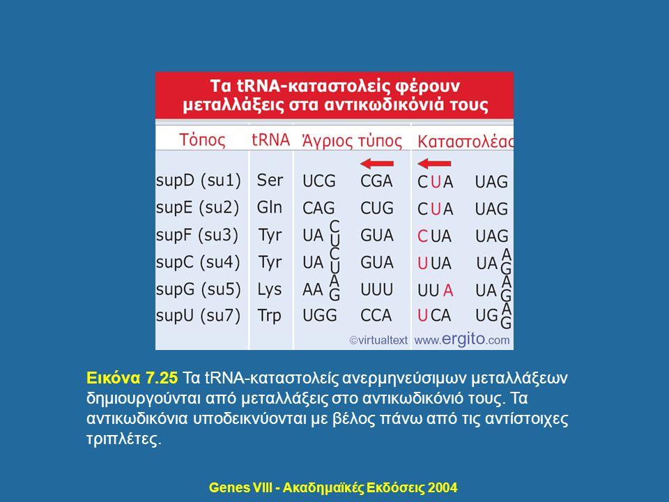 Genes VIII - Ακαδημαϊκές Εκδόσεις 2004 Εικόνα 7.25 Τα tRNA-καταστολείς ανερμηνεύσιμων μεταλλάξεων δημιουργούνται από μεταλλάξεις στο αντικωδικόνιό του