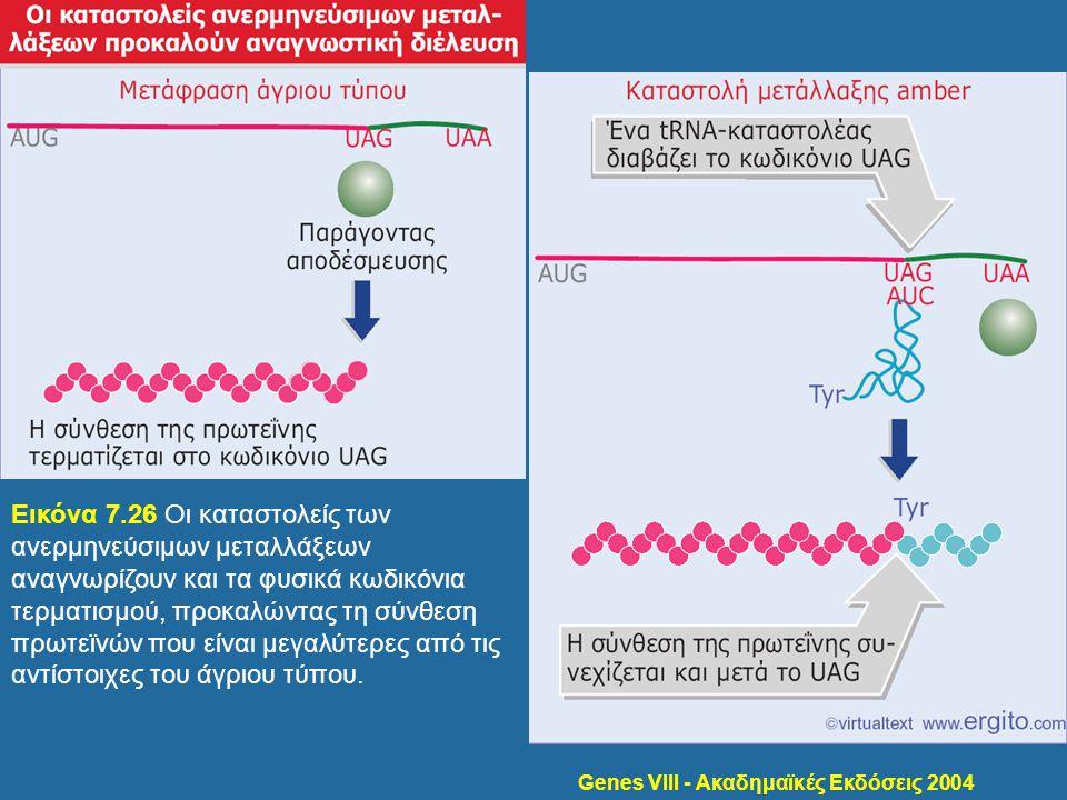 Genes VIII - Ακαδημαϊκές Εκδόσεις 2004 Εικόνα 7.26 Οι καταστολείς των ανερμηνεύσιμων μεταλλάξεων αναγνωρίζουν και τα φυσικά κωδικόνια τερματισμού, προ