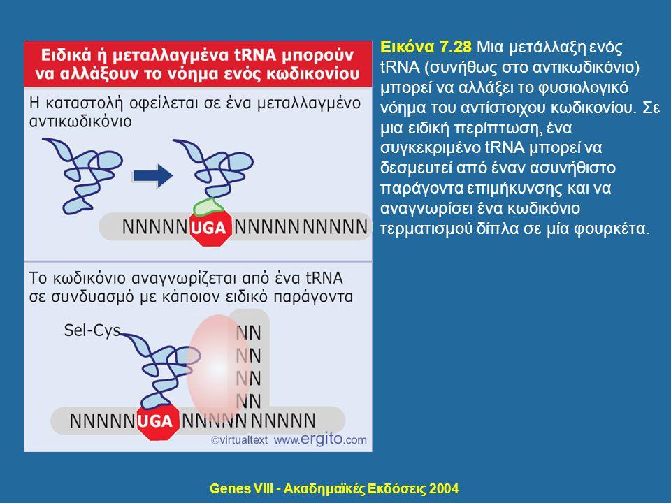 Genes VIII - Ακαδημαϊκές Εκδόσεις 2004 Εικόνα 7.28 Μια μετάλλαξη ενός tRNA (συνήθως στο αντικωδικόνιο) μπορεί να αλλάξει το φυσιολογικό νόημα του αντί