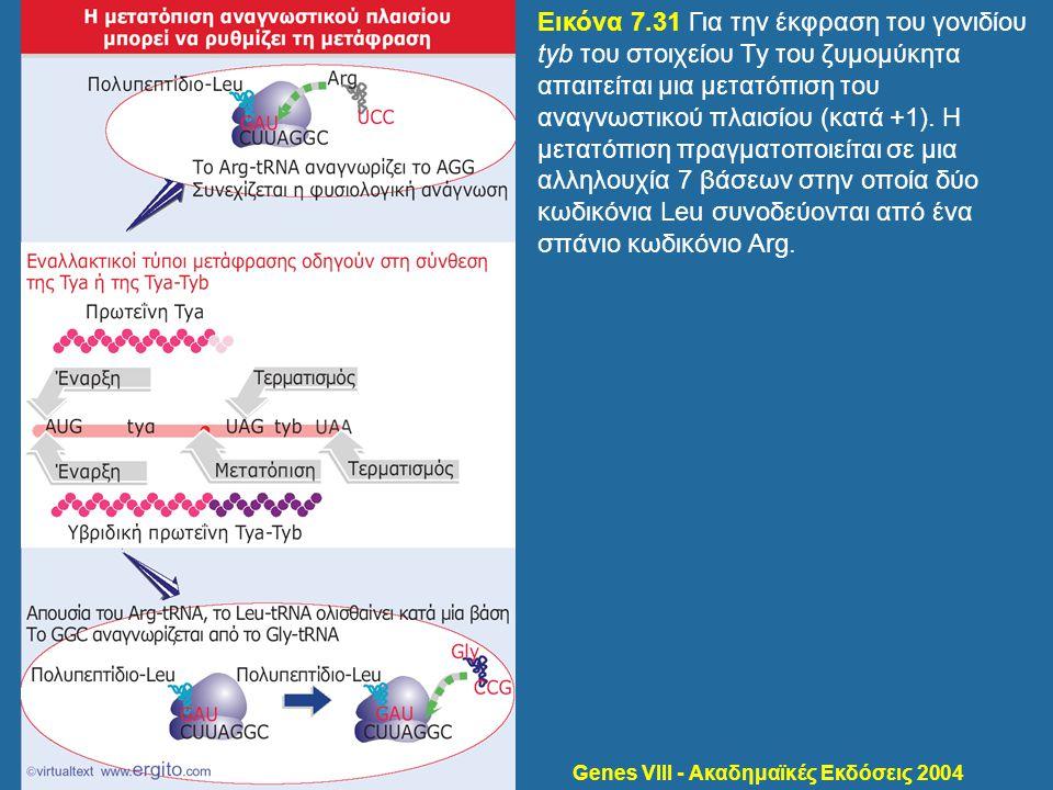 Genes VIII - Ακαδημαϊκές Εκδόσεις 2004 Εικόνα 7.31 Για την έκφραση του γονιδίου tyb του στοιχείου Ty του ζυμομύκητα απαιτείται μια μετατόπιση του αναγ