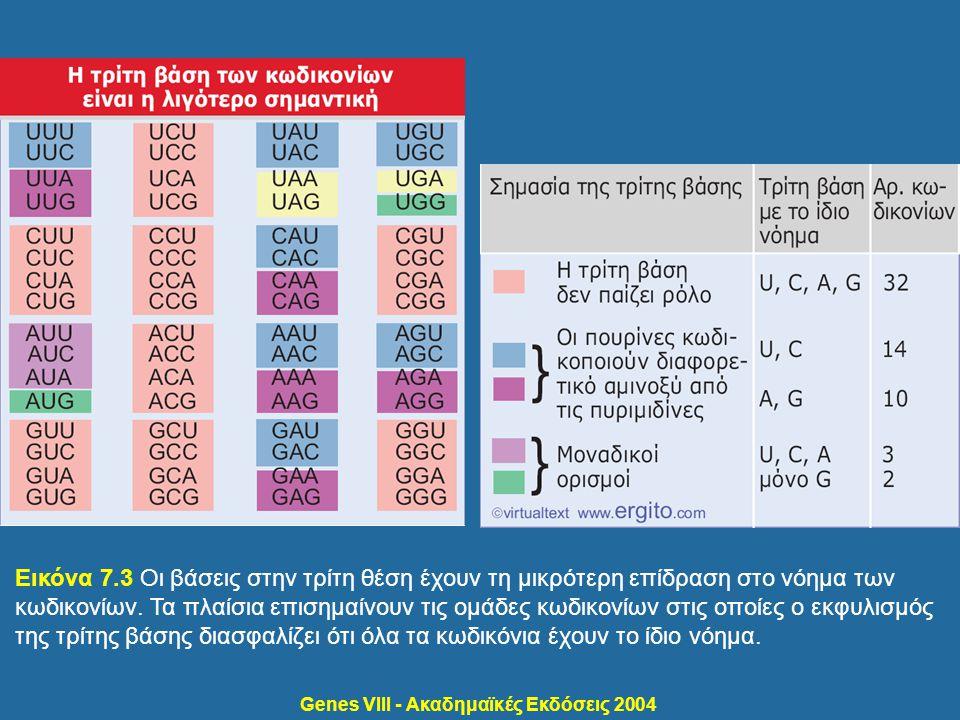 Genes VIII - Ακαδημαϊκές Εκδόσεις 2004 Εικόνα 7.4 Η ταλάντευση στο ζευγάρωμα βάσεων επιτρέπει το σχηματισμό ζευγών G- U μεταξύ της τρίτης βάσης του κωδικονίου και της πρώτης βάσης του αντικωδικονίου.