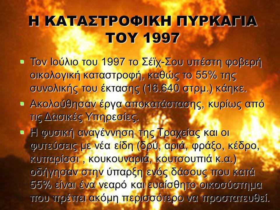 Η ΚΑΤΑΣΤΡΟΦΙΚΗ ΠΥΡΚΑΓΙΑ ΤΟΥ 1997  Τον Ιούλιο του 1997 το Σέϊχ-Σου υπέστη φοβερή οικολογική καταστροφή, καθώς το 55% της συνολικής του έκτασης (16.640 στρμ.) κάηκε.