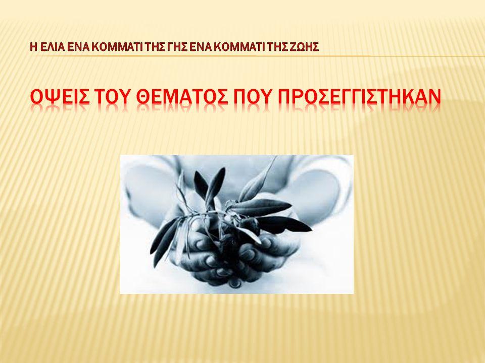 Σχετικά με την ελιά: Α) στην αρχαιότητα Β) στον καλλωπισμό, την υγιεινή και τη διατροφή Γ) στον Χριστιανισμό Δ) την καλλιέργεια και συγκομιδή της Ε) την παραγωγή του λαδιού
