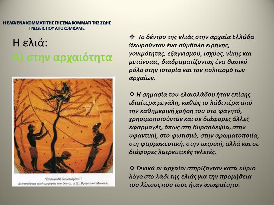 Η ελιά: Α) στην αρχαιότητα  Το δέντρο της ελιάς στην αρχαία Ελλάδα θεωρούνταν ένα σύμβολο ειρήνης, γονιμότητας, εξαγνισμού, ισχύος, νίκης και μετάνοι
