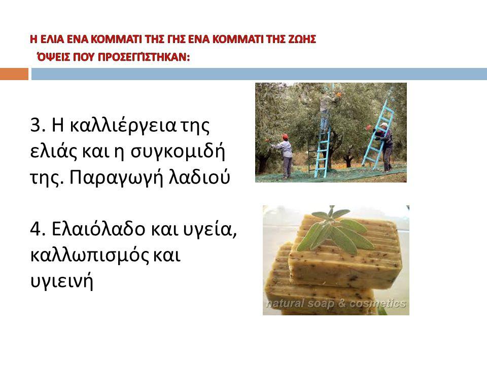3. Η καλλιέργεια της ελιάς και η συγκομιδή της. Παραγωγή λαδιού 4. Ελαιόλαδο και υγεία, καλλωπισμός και υγιεινή