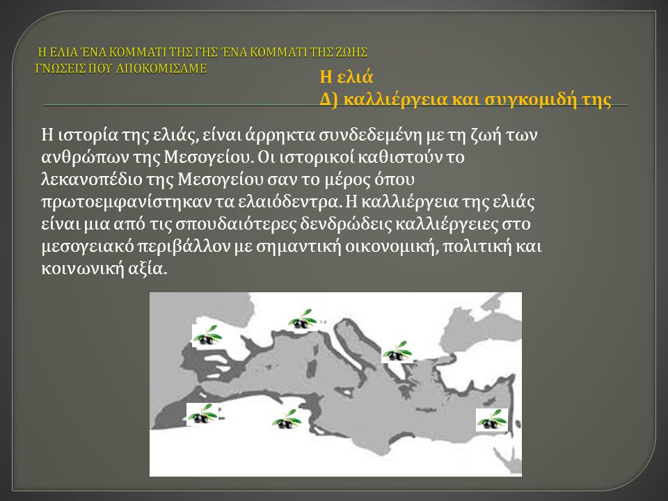 Η ιστορία της ελιάς, είναι άρρηκτα συνδεδεμένη με τη ζωή των ανθρώπων της Μεσογείου. Οι ιστορικοί καθιστούν το λεκανοπέδιο της Μεσογείου σαν το μέρος
