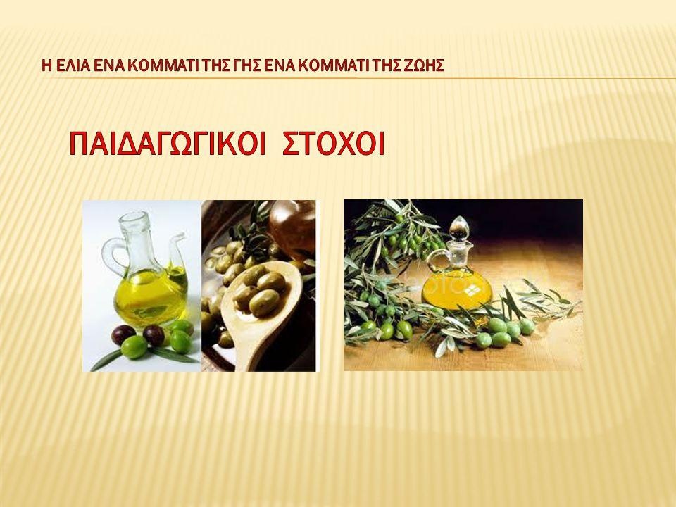 Το λάδι: Β) στη Μεσογειακή διατροφή  Ένα από τα πιο σημαντικά τρόφιμα της πυραμίδας της Μεσογειακής Διατροφής είναι το ελαιόλαδο.