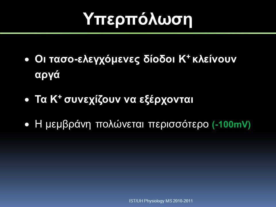 Υπερπόλωση  Οι τασο-ελεγχόμενες δίοδοι Κ + κλείνουν αργά  Τα Κ + συνεχίζουν να εξέρχονται  Η μεμβράνη πολώνεται περισσότερο (-100mV) IST/UH Physiol