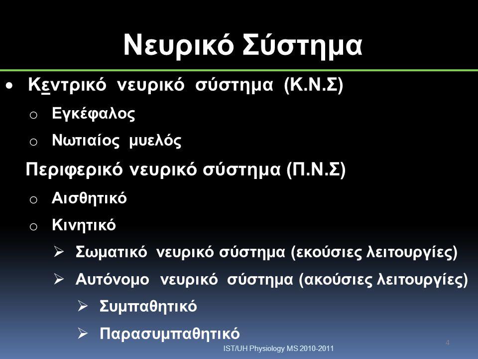 4 Νευρικό Σύστημα  Κεντρικό νευρικό σύστημα (Κ.Ν.Σ) o Εγκέφαλος o Νωτιαίος μυελός Περιφερικό νευρικό σύστημα (Π.Ν.Σ) o Αισθητικό o Κινητικό  Σωματικ