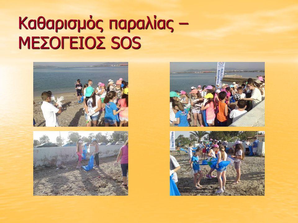 Καθαρισμός παραλίας – ΜΕΣΟΓΕΙΟΣ SOS
