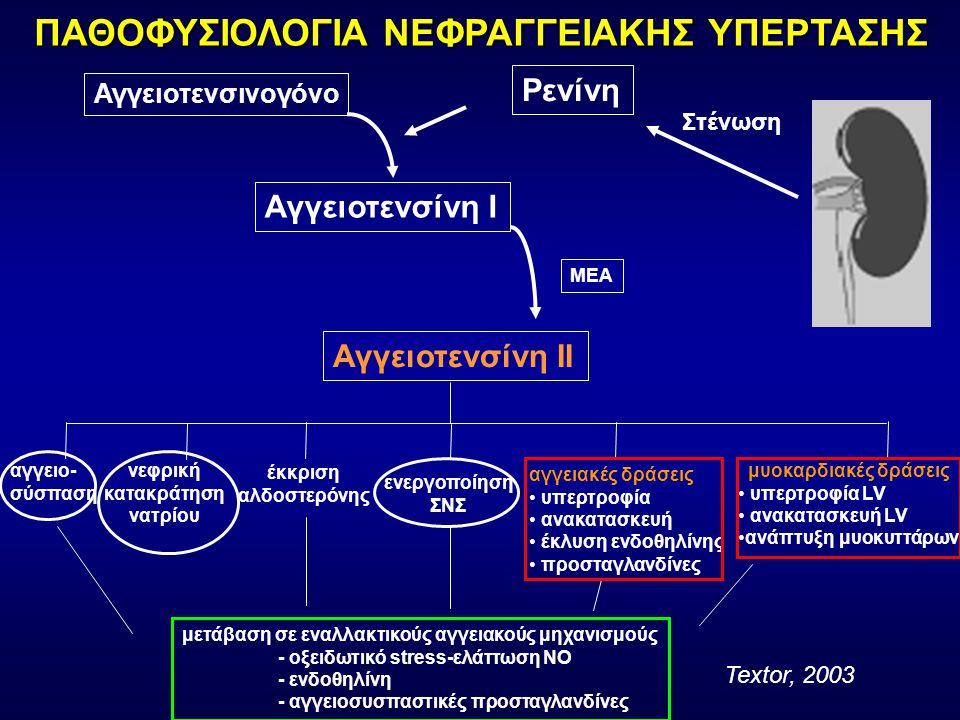 Στένωση Ρενίνη Αγγειοτενσινογόνο Αγγειοτενσίνη Ι Αγγειοτενσίνη ΙΙ ΜΕΑ αγγειο- σύσπαση νεφρική κατακράτηση νατρίου έκκριση αλδοστερόνης αγγειακές δράσεις υπερτροφία ανακατασκευή έκλυση ενδοθηλίνης προσταγλανδίνες ενεργοποίηση ΣΝΣ μυοκαρδιακές δράσεις υπερτροφία LV ανακατασκευή LV ανάπτυξη μυοκυττάρων μετάβαση σε εναλλακτικούς αγγειακούς μηχανισμούς - οξειδωτικό stress-ελάττωση ΝΟ - ενδοθηλίνη - αγγειοσυσπαστικές προσταγλανδίνες ΠΑΘΟΦΥΣΙΟΛΟΓΙΑ ΝΕΦΡΑΓΓΕΙΑΚΗΣ ΥΠΕΡΤΑΣΗΣ Textor, 2003