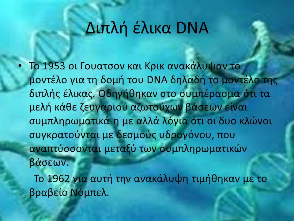 Διπλή έλικα DNA Το 1953 οι Γουατσον και Κρικ ανακάλυψαν το μοντέλο για τη δομή του DNA δηλαδή το μοντέλο της διπλής έλικας. Οδηγήθηκαν στο συμπέρασμα