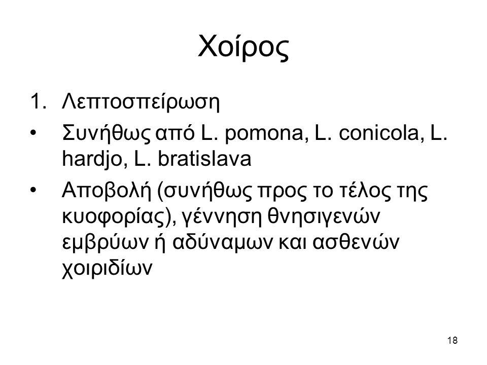 18 Χοίρος 1.Λεπτοσπείρωση Συνήθως από L. pomona, L. conicola, L. hardjo, L. bratislava Αποβολή (συνήθως προς το τέλος της κυοφορίας), γέννηση θνησιγεν