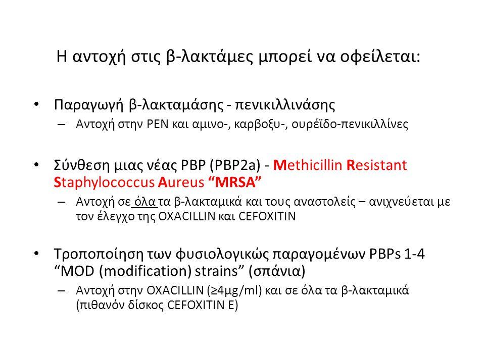 Η αντοχή στις β-λακτάμες μπορεί να οφείλεται: Παραγωγή β-λακταμάσης - πενικιλλινάσης – Αντοχή στην PEN και αμινο-, καρβοξυ-, ουρέϊδο-πενικιλλίνες Σύνθ