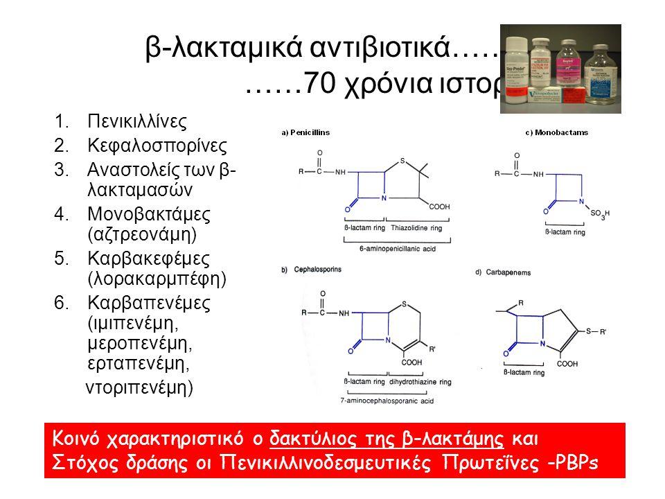 Αντοχή των Εντεροκόκκων στα β-λακταμικά Οι Εντερόκοκκοι διαθέτουν την PBP5, χαμηλής συγγένειας με τα β-λακταμικά, με συνέπεια: – Ενδογενή αντοχή σε: κεφαλοσπορίνες, αντισταφυλοκοκκικές πενικιλλίνες (OXA) και αντιψευδομοναδικές πενικιλλίνες (TIC, CARB) – Σχετικά υψηλές MICs σε AMP και PIP, σε σχέση με τους στρεπτοκόκκους: E.